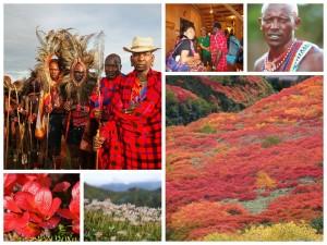 masai&紅葉