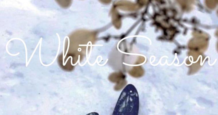 2020-21 冬プログラム更新